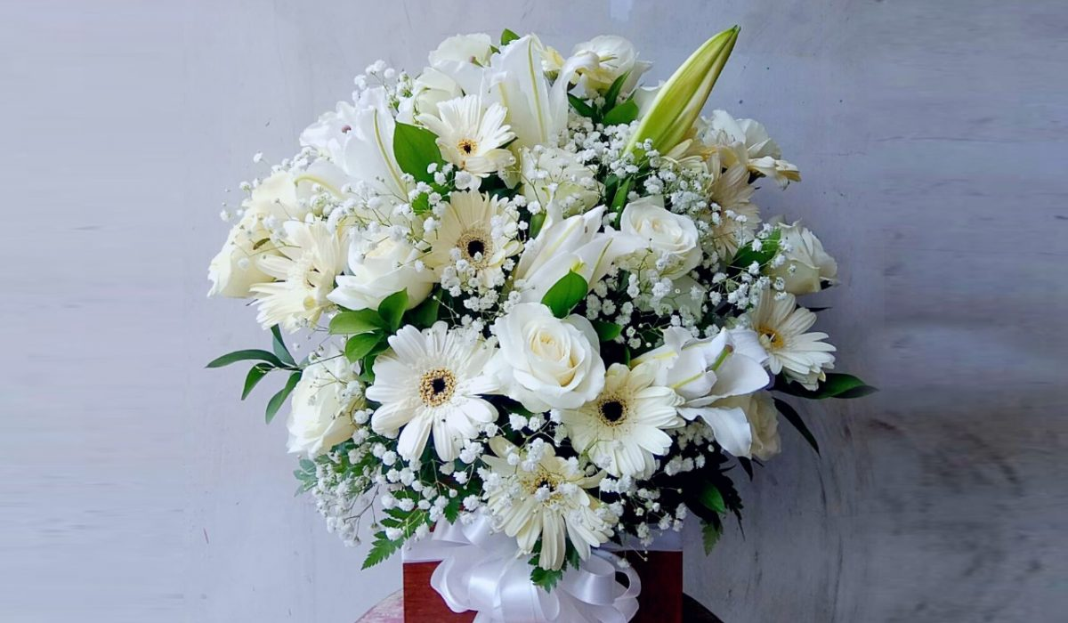 all-white-flowers